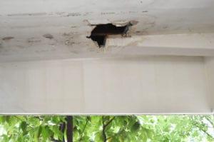roofing company needed fascia roof leak